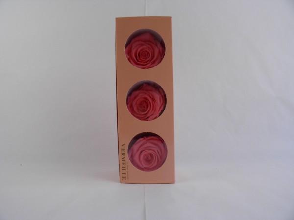 Gefrier Rose Pink Nectar